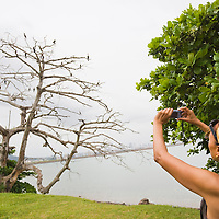 Woman taking pictures of birds on a bare tree, Panama City, Central America