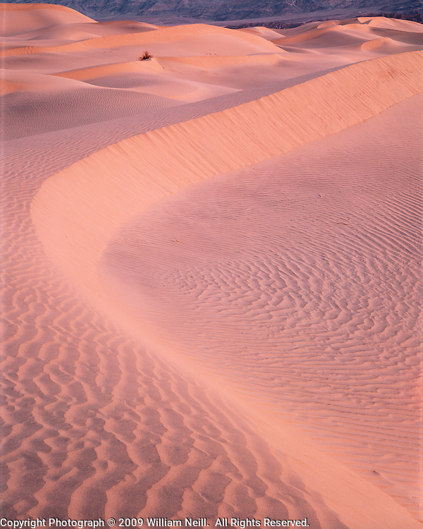 Dawn light on Sand Dunes, Death Valley National Park, California