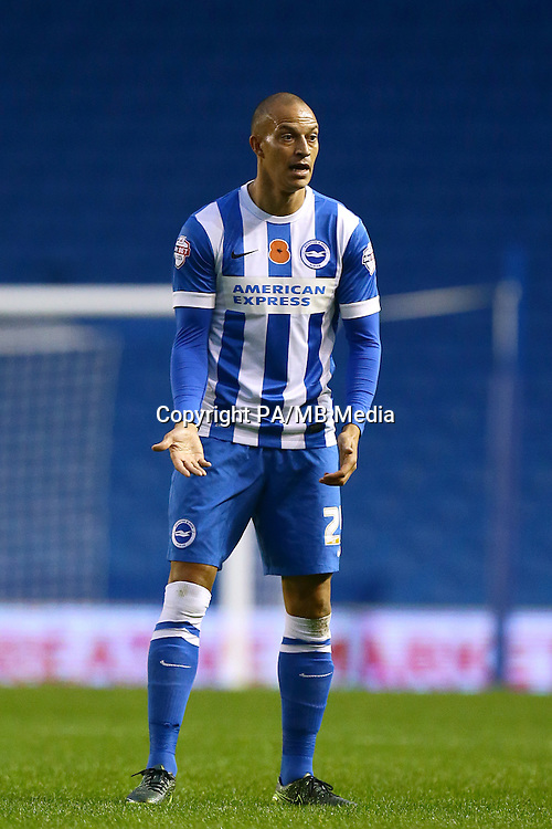 Bobby Zamora, Brighton and Hove Albion