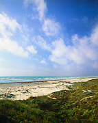 0505-1020B ~ Copyright: George H. H. Huey ~ Foredunes and beach, Gulf of Mexico. Padre Island National Seashore, Texas.