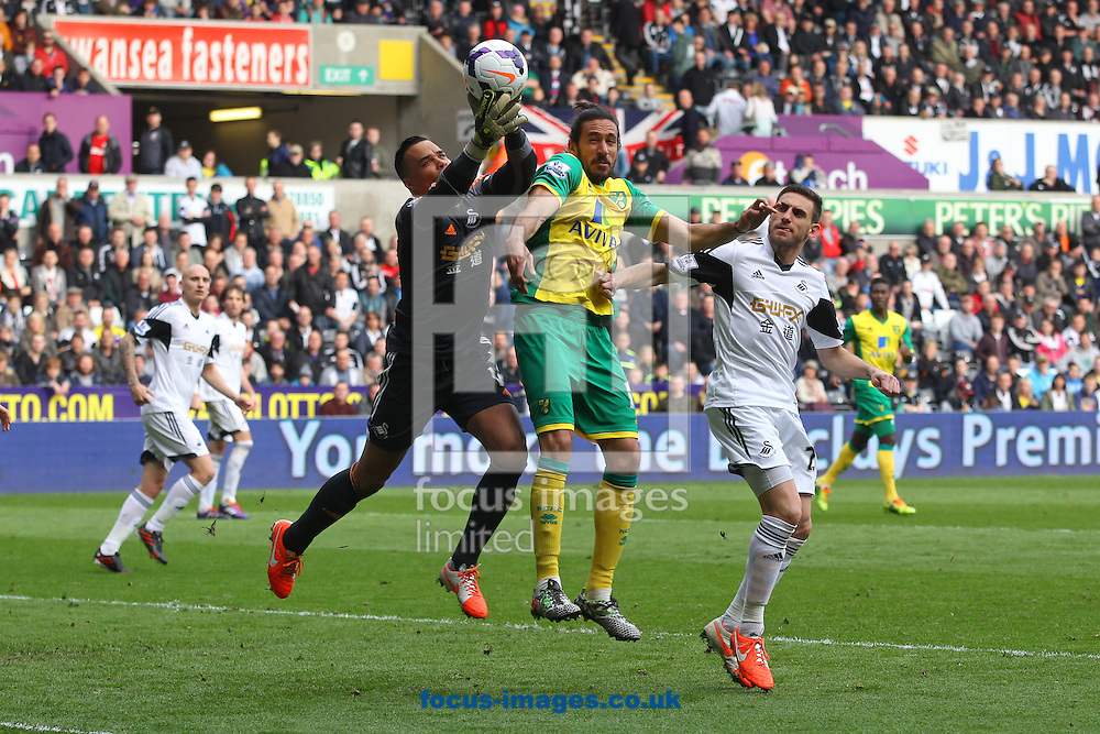 Michel Vorm of Swansea and Jonas Gutierrez of Norwich in action during the Barclays Premier League match at the Liberty Stadium, Swansea<br /> Picture by Paul Chesterton/Focus Images Ltd +44 7904 640267<br /> 29/03/2014