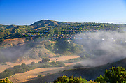 Fog Through Aliso Viejo Community
