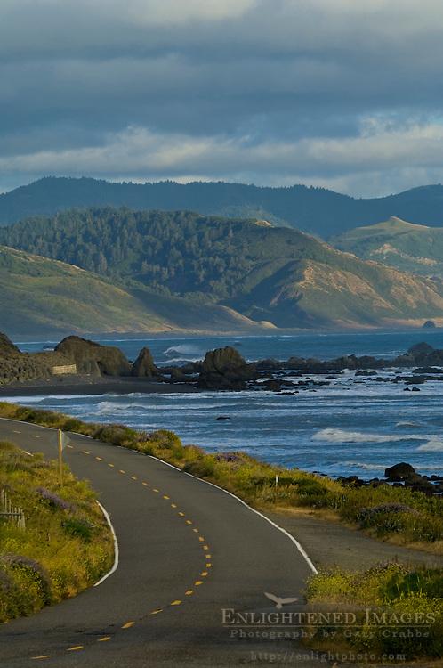 The Mattole Road along the ocean at the Lost Coast near Cape Mendocino, Humboldt County, California