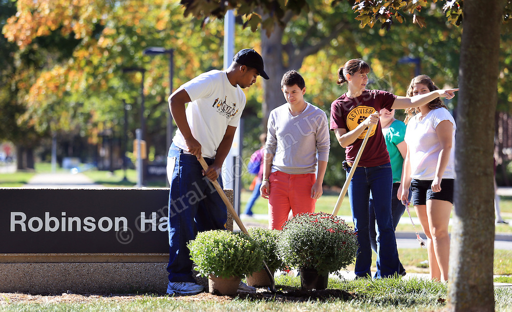 Robinson Hall residence hall director Luanne Goffnett (pointing) directs students as they begin to plant mums around their residence hall today, Friday Sept. 27, 2013. Students are planting about 1,500 maroon and gold school-color mums near the residence halls and around campus. The flowers were sponsored by CMU Residence Life. Central Michigan University Photos by Steve Jessmore