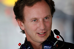 Motorsports / Formula 1: World Championship 2010, GP of Brazil, Christian Horner (GBR, Teamchef Red Bull Racing),