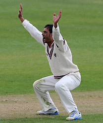 Somerset's Abdur Rehman appeals unsuccessfully for the LBW of Middlesex's Nick Gubbins. - Photo mandatory by-line: Harry Trump/JMP - Mobile: 07966 386802 - 27/04/15 - SPORT - CRICKET - LVCC Division One - County Championship - Somerset v Middlesex - Day 2 - The County Ground, Taunton, England.