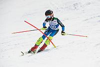Piche Invitational Paul Ladouceur Championship slalom U14 boys  2nd run.    ©2019 Karen Bobotas Photographer