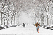 Bicycling in a snow storm during New York City's fourth Nor'easter in four weeks, in the area of The Mall in Central Park in New York City on March 21, 2018.