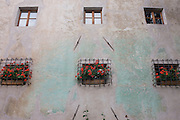 Green stained render on walls of building in Eppan-Appiano, South Tyrol, northern Italy.