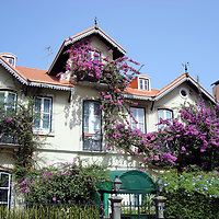 Home Covered with Purple Lilacs in Sintra, Portugal <br />