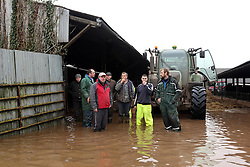 © Licensed to London News Pictures. Moorland. Somerset. 06/02/14. West Yeo farm - The evacuation of 550 beef cattle all in a day. Rebecca Horsington put out an appeal on Facebook for help today- about 30 farmers arrived with trailers to take cattle toa nearbycattle market in Bridgwaterout of danger. from floodwater which was rising rapidly.. Photo credit : Jason Bryant/LNP