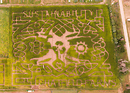 20170911 Chatfield Cornmaze Aerial by Drone