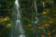 Small waterfall along NF-21, WA