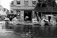 The stables of the Central Park carriage horses on West 38th street in Manhattan.