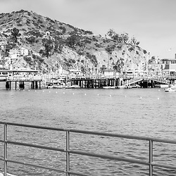 Catalina Island tiki umbrella black and white panorama photo with the Catalina Casino, Avalon Pier, and Avalon Harbor. Beautiful Santa Catalina Island is a popular travel destination off the Southern California coast in the USA. Copyright ⓒ 2017 Paul Velgos with All Rights Reserved.