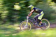 Joe Nicholson competes in Stage 4 of the Keystone Big Mountain Enduro in Keystone, CO. ©Brett Wilhelm