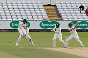 Harry Swindells batting during the Specsavers County Champ Div 2 match between Durham County Cricket Club and Leicestershire County Cricket Club at the Emirates Durham ICG Ground, Chester-le-Street, United Kingdom on 21 August 2019.