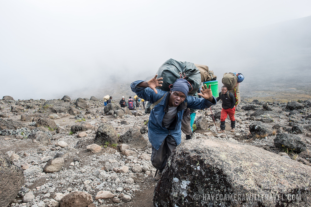 A porter poses for the camera on the trail between Moir Hut Camp (13,660 feet) and Lava Tower (15,215 feet) on Mt Kilimanjaro's Lemosho Route. At this elevation, the heath zone (moorland) gives way to rocky alpine desert.
