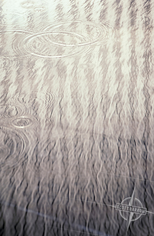 Ripples from water droplets
