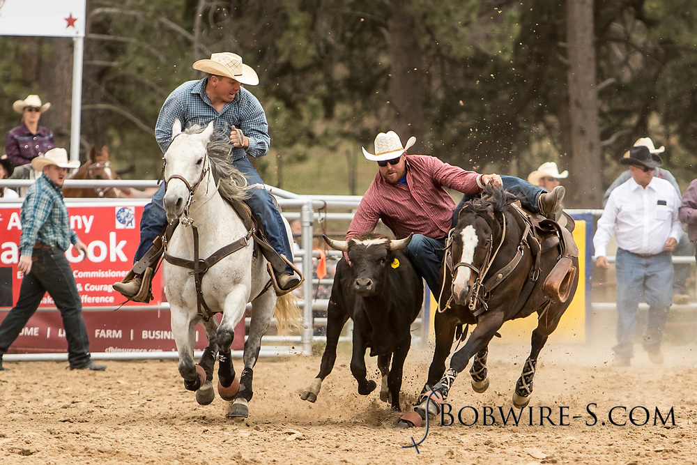 Joe Buffington makes his steer wrestling run during the third performance of the Elizabeth Stampede on Sunday, June 3, 2018.