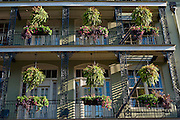 Ferns and flower baskets decorate a balcony in New Orleans, Louisiana.