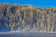 Hoarfrost on trees. Lac Seul<br />