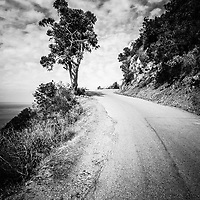 Catalina Island Wrigley Road black and white photo. Wrigley Road is a popular tourist route that winds through the mountains of Catalina Island in Avalon California.