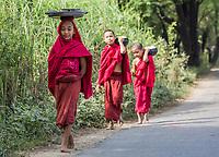 CHAUNG-U, MYANMAR - DECEMBER 01, 2016 : children boys monks walking on a road near Monywa Myanmar (Burma)