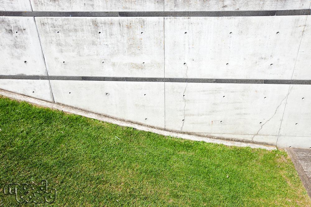 Grass verge next to brick wall