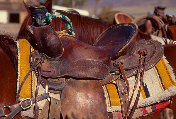 Leather saddle on a cowboy's horse