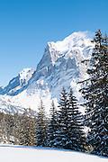 Winterlandschaft mit Wetterhorn