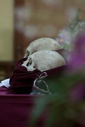 Crani e fiori.<br /> Skull and flowers.