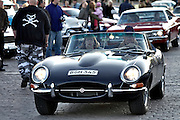 During summer from June to Septemper, every first Friday of the month is Vintage Car Cruising Night. Hundreds of classic American cars cruise around downtown Helsinki and meet at special places to have a good time, here at Kauppatori (Market Square). European Classics are also welcome, here a Jaguar E-Type cabriolet.