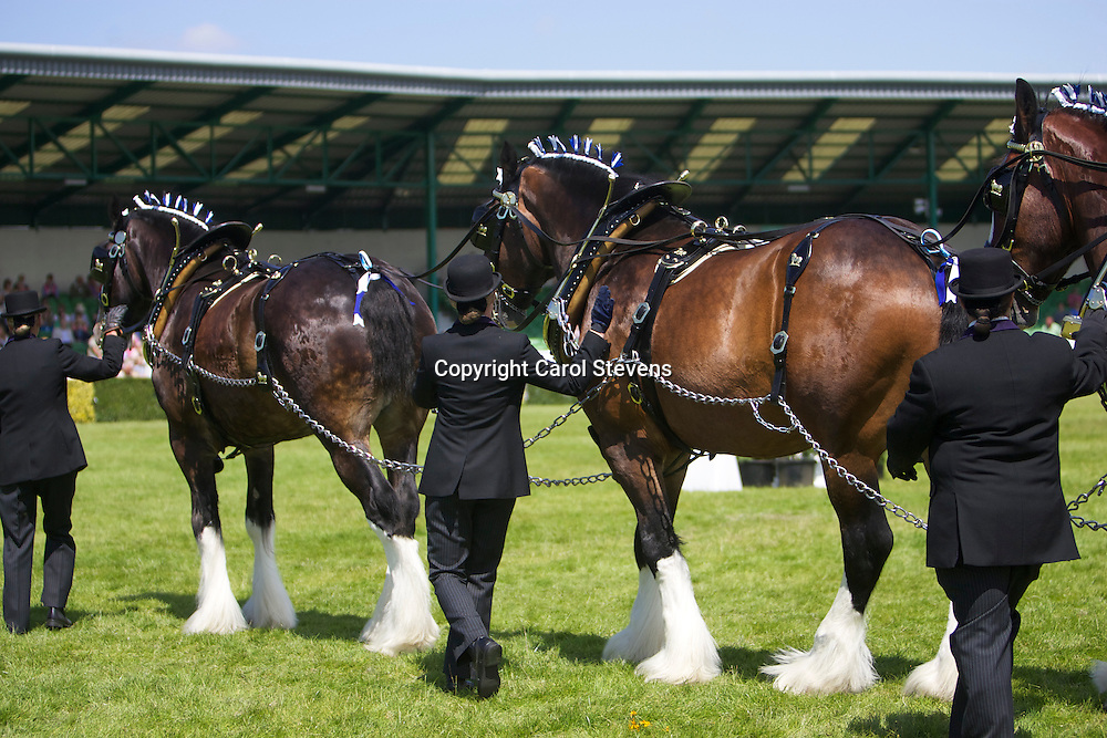 John Goodwin's Co-operative Funeralcare South Random Turnout Team<br />