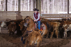 April 29 2017 - Minshall Farm Cutting 1, held at Minshall Farms, Hillsburgh Ontario. The event was put on by the Ontario Cutting Horse Association. Riding in the Ranch Class is Mary Baks on Starklightssundaybest owned by the rider.