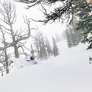 Keely Kelleher ripping new storm powder outside the boundaries of Jackson Hole Mountain Resort.