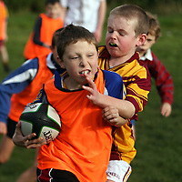 Callum Noonan gets passed Patrick O' Mahoney at the East Clare Eagles rugby training in Tulla on Saturday morning.<br /><br />Photograph by Yvonne Vaughan.