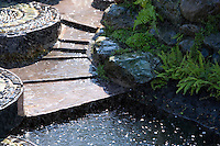 rill with maidenhair fern and mist from water jets