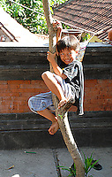Our friend Made's son climbing a tree in Bali, Indonesia.