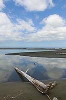 Oregon Coast near Port Orford Oregon