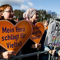 22 Demonstration gegen die AfD
