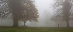© Licensed to London News Pictures 15/11/2012.  Kenilworth, Warwickshire.   Dog walkers woke up to a thick veil of fog over Kenilworth this morning.  Photo credit : Alison Baskerville/LNP