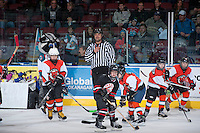 KELOWNA, CANADA - DECEMBER 6: Phil Von Unruh referees a mini minor hockey game during intermission on December 6, 2013 at Prospera Place in Kelowna, British Columbia, Canada.   (Photo by Marissa Baecker/Shoot the Breeze)  ***  Local Caption  ***