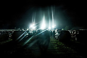 Cars parked in a grass field for evening rodeo event, Cowtown, New Jersey, USA