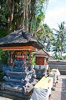 Hindu altars beneath a sacred banyan tree in Eastern Bali, Indonesia
