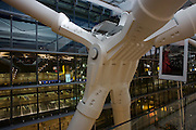 "Seen from the inside looking outwards, we see one of the giant 38 ton 'torso nodes' of Heathrow Airport's Terminal 5 roof structure. Developed by Arup to design the geometry of abutment steel, this engineering challenge needed to help support 50 ton rafters to made T5 the largest free-standing building in the UK. In the centre is the torso that sits on top of two feet with the wings splaying out to the window. The main architecture was created by the Richard Rogers Partnership (now Rogers Stirk Harbour and Partners) and opened in 2008 after a cost of £4.3 billion. Terminal 5 has the capacity to serve around 30 million passengers a year. From writer Alain de Botton's book project ""A Week at the Airport: A Heathrow Diary"" (2009). ."
