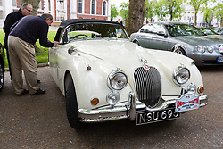 © Licensed to London News Pictures. 27/04/2014. London, UK. People look at vintage Jaguar cars. Around 250 vintage Jaguar cars set off in a staggered start from the Old Royal Naval College in Greenwich, south east London for the 16th annual London to Brighton rally this morning. Photo credit : Vickie Flores/LNP