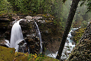 The North Fork of the Nooksack River drops 88 feet (27 meters) at Nooksack Falls, located in Washington's North Cascades. Wells Creek is visible between the tree trunks on the right side of the image; it joins the north fork of the Nooksack River just below Nooksack Falls.