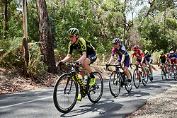 Jessica Allen (AUS) on the Stirling climb on Stage 3 of 2020 Santos Women's Tour Down Under, a 109.1 km road race from Nairne to Stirling, Australia on January 18, 2020. Photo by Sean Robinson/velofocus.com