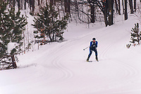 The Annual Whitepine Stampede at Schuss Mountain Shanty Creek Resport and Spa on February 2, 2019.